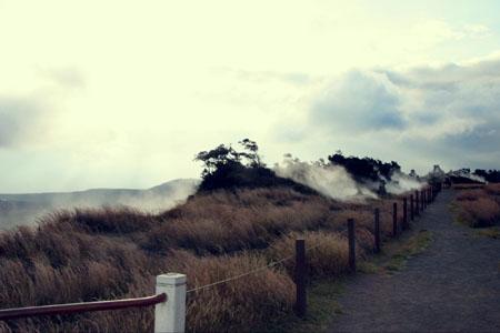 Travel Diary: Hawaii Part V