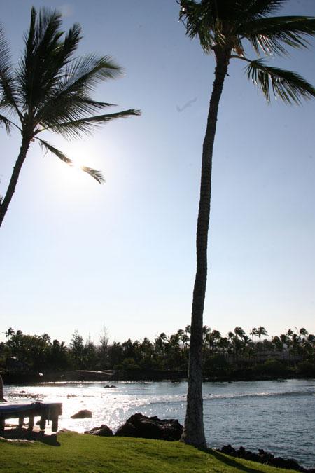 Travel Diary: Hawaii Part I