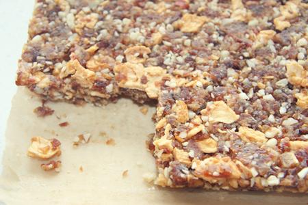 Raw Gluten Free Date Bars