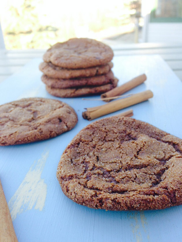 gluten free dairy free soft and chewy  gingersnaps recipe