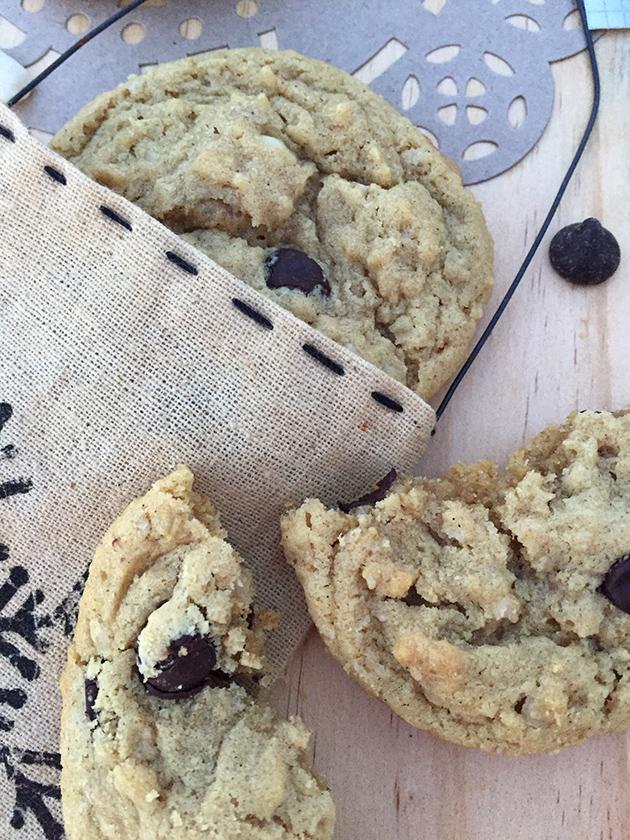 gluten free dairy free double peanut chocolate chip recipe