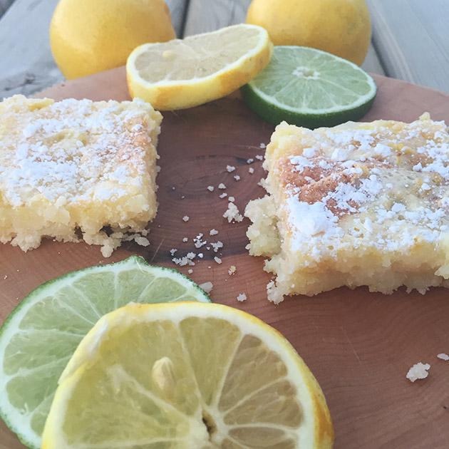 gluten free dairy free citrus squares recipe