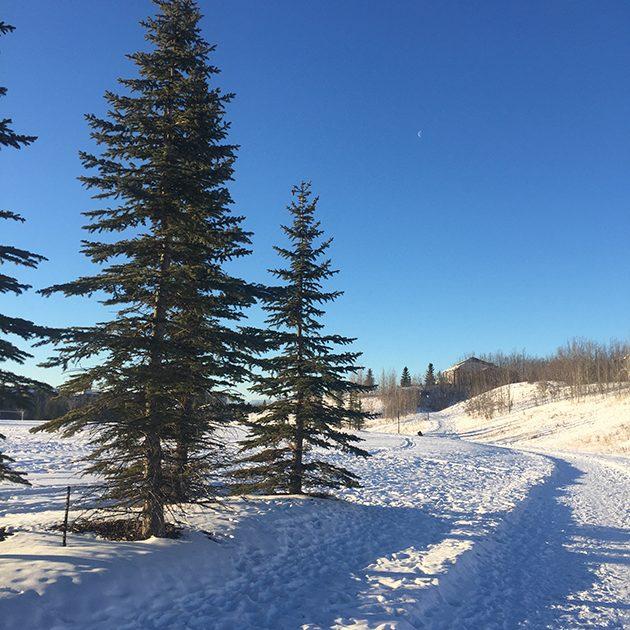 calgary winter