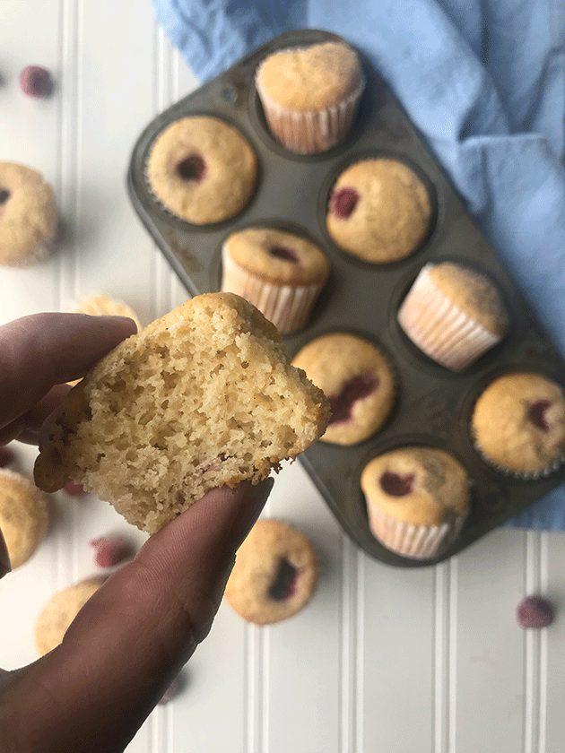 grain free raspberry mini muffins recipe
